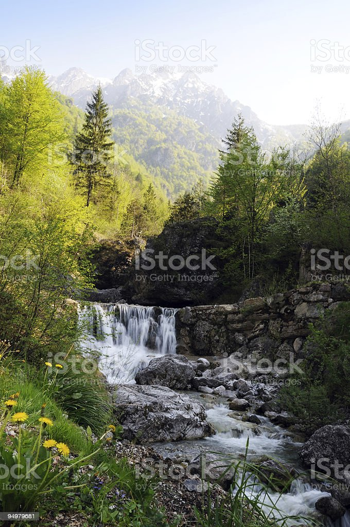 springtime in mountains stock photo
