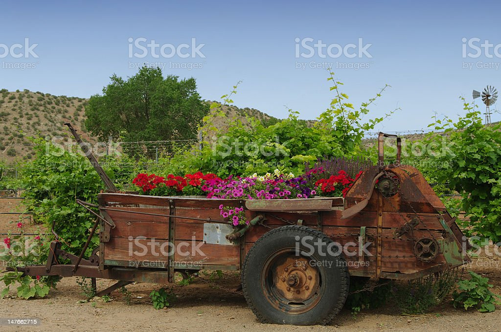 Springtime in New Mexico stock photo