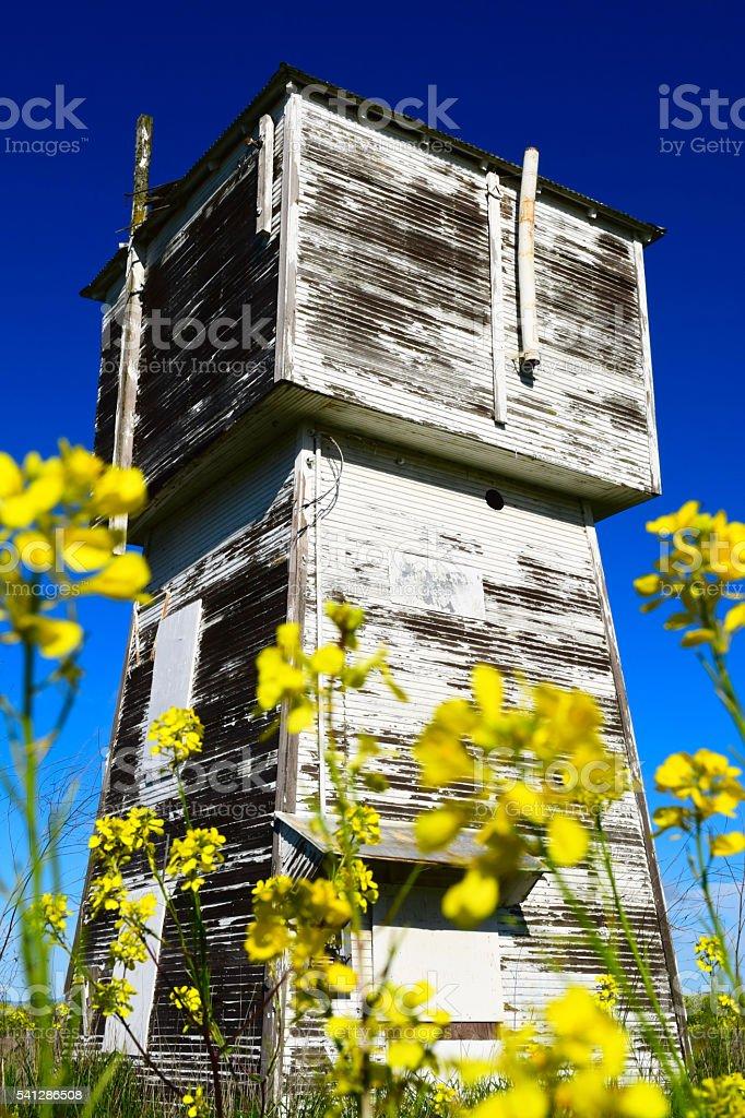 Springtime in Sonoma stock photo