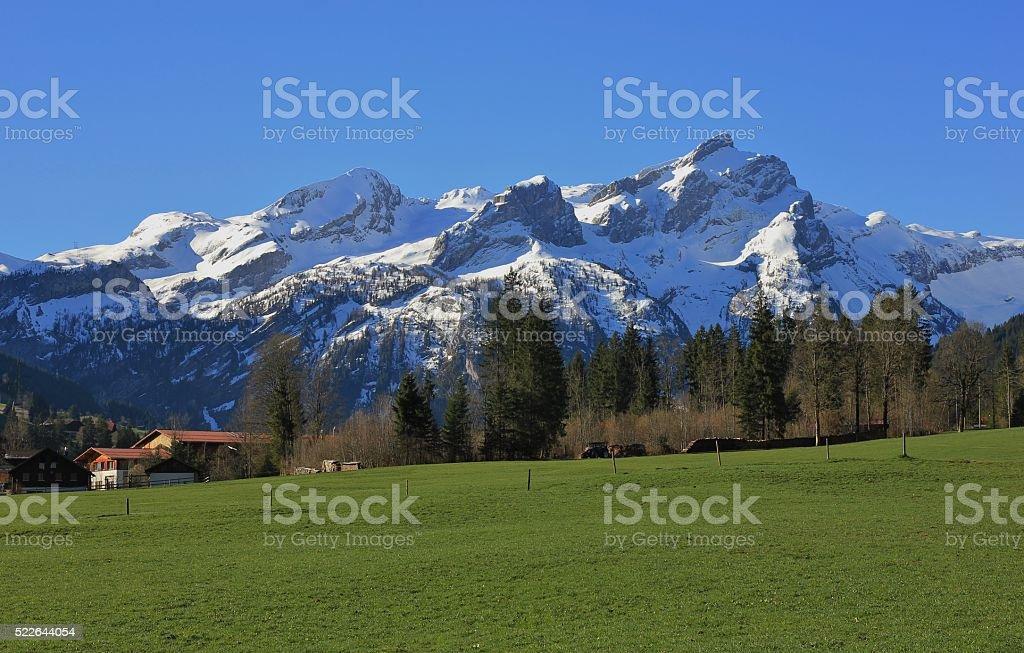 Springtime in the Swiss Alps stock photo