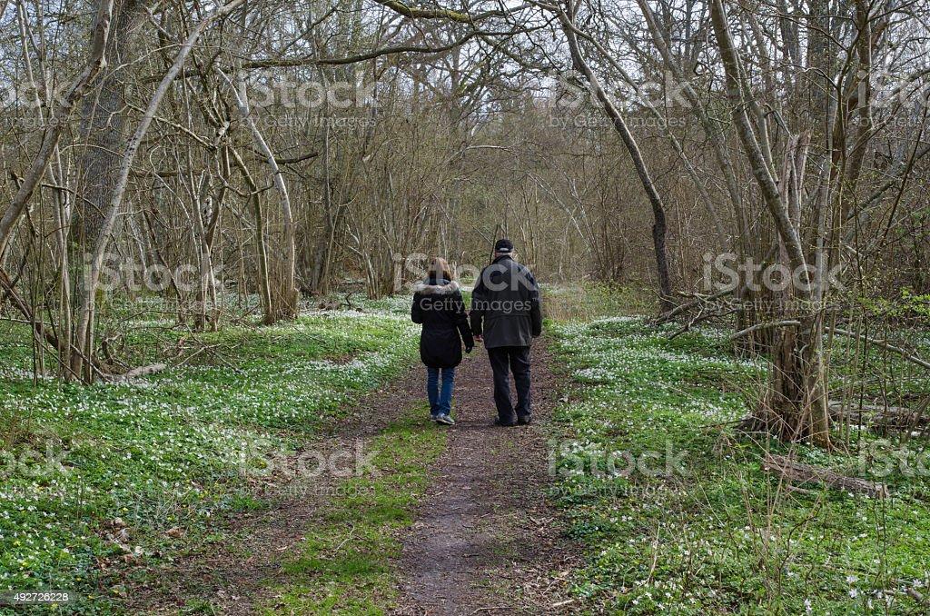 Springtime recreation walk stock photo