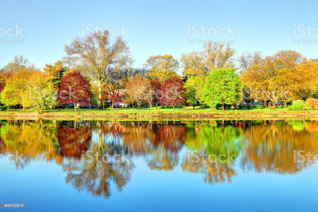 Springtime Reflection stock photo