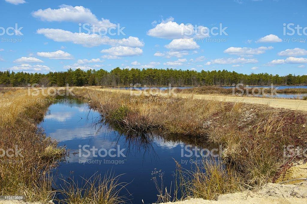springtime scenic royalty-free stock photo