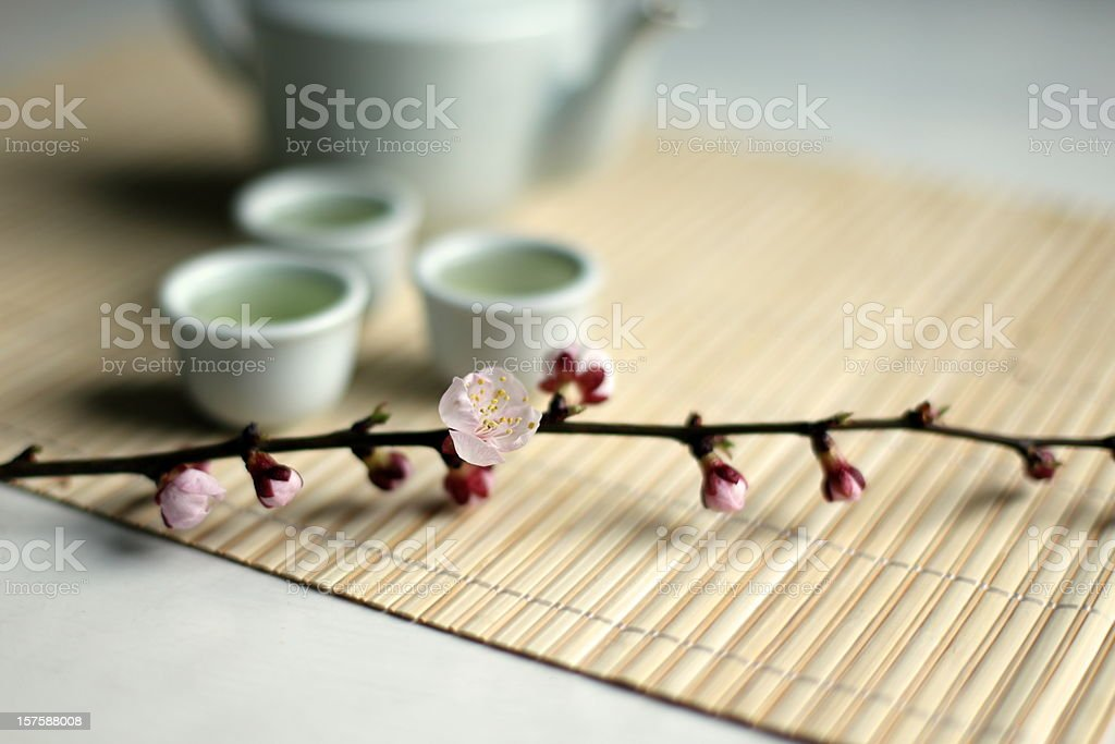 Springtime Tea royalty-free stock photo