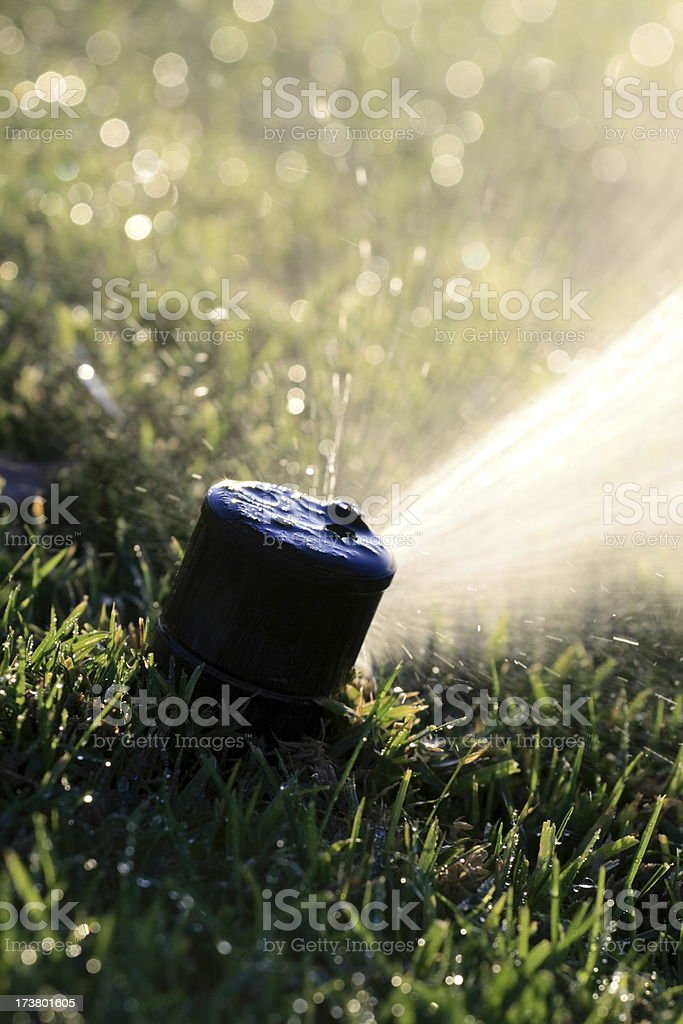 Sprinkler Head Close Up stock photo