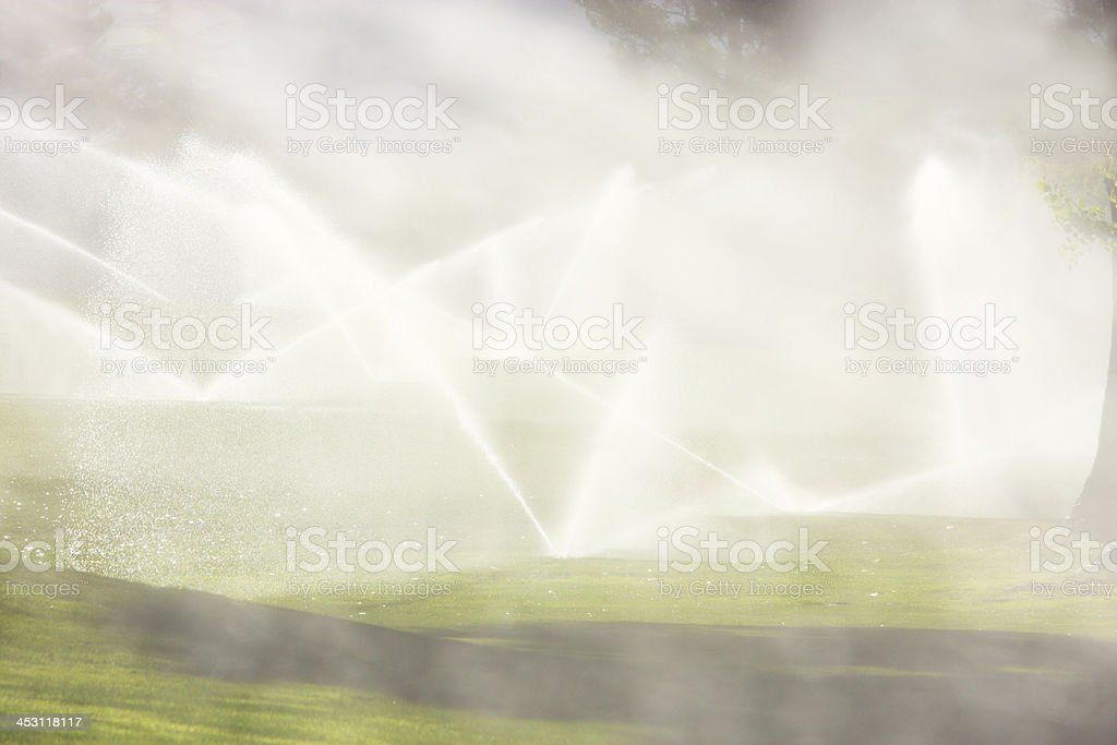 Sprinkler Irrigation Spray Landscape Watering stock photo