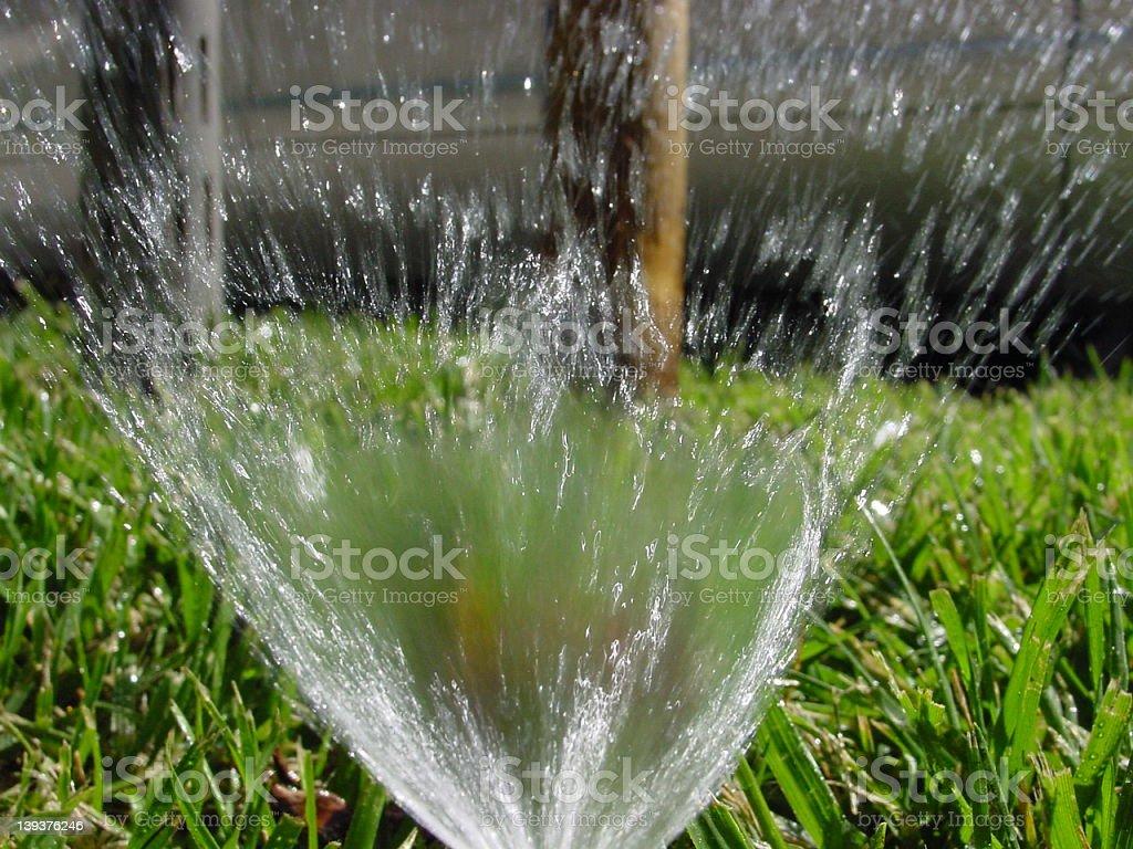 Sprinkler royalty-free stock photo