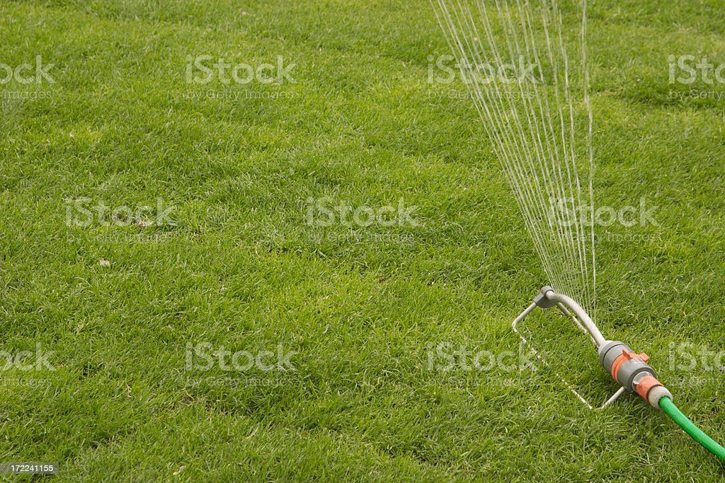Sprinkler royalty-free stock photo