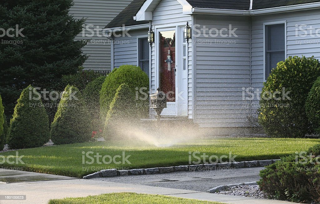 Sprinkler spinning on a front lawn stock photo