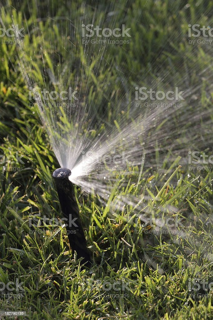 Sprinkler Spraying Lawn Angle stock photo