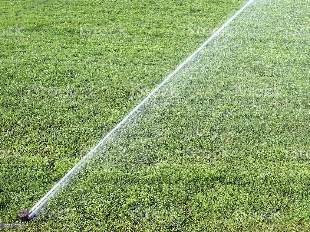 Sprinkler spraying water on  grass royalty-free stock photo