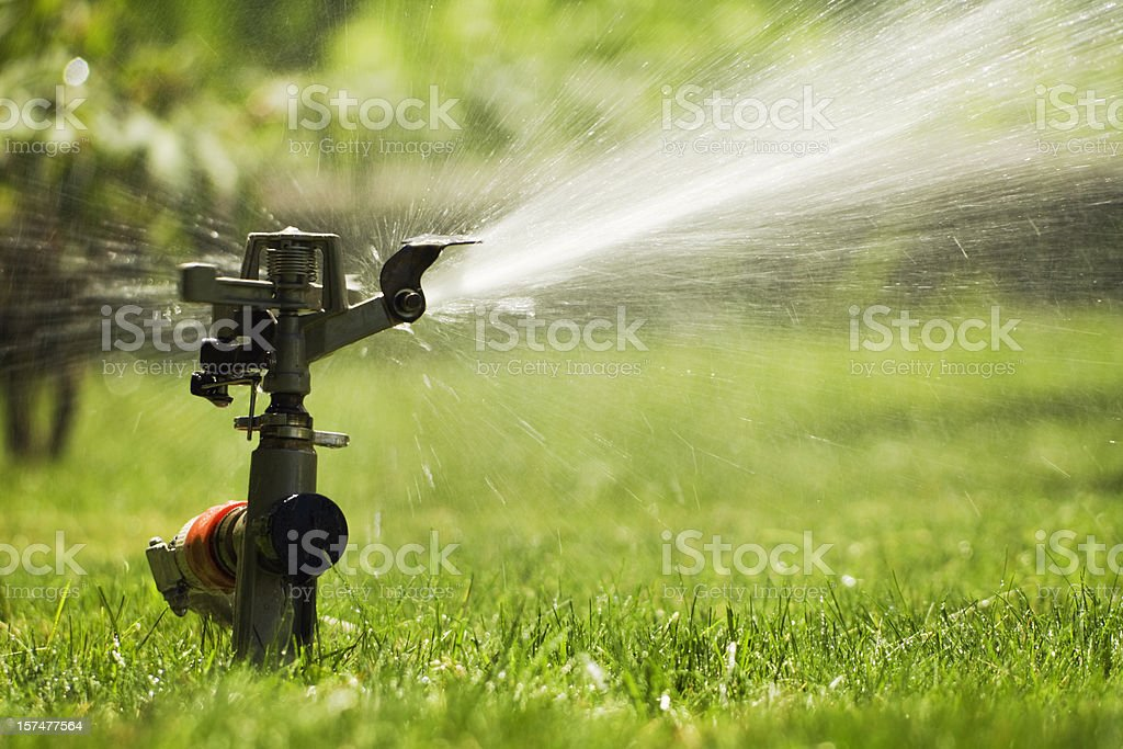Sprinkler Watering Grass Lawn, Summer Irrigation Equipment for Spraying Yard royalty-free stock photo
