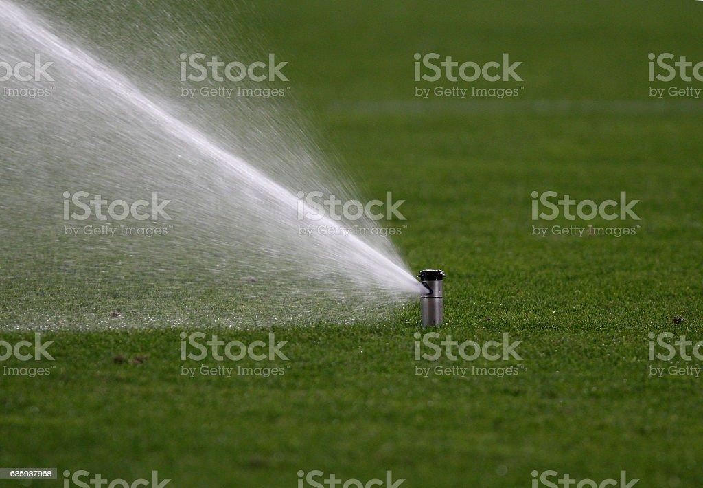 Sprinkler watering stock photo