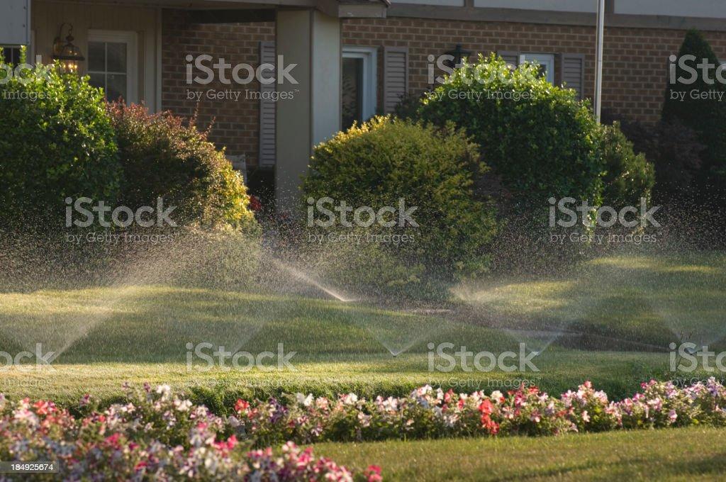 Sprinklers & Flowers stock photo