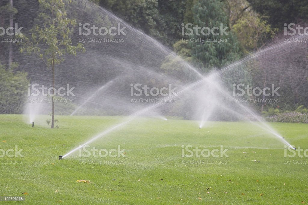 sprinklers stock photo