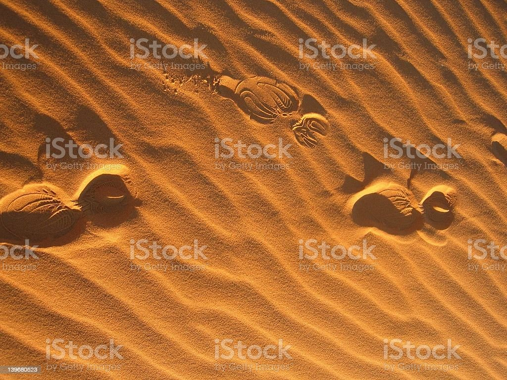 Sprints in the Desert sand stock photo