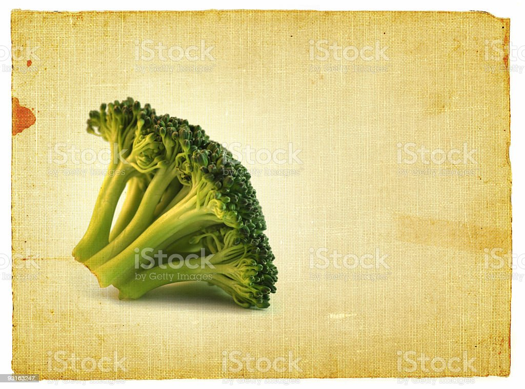 sprout vintage royalty-free stock photo
