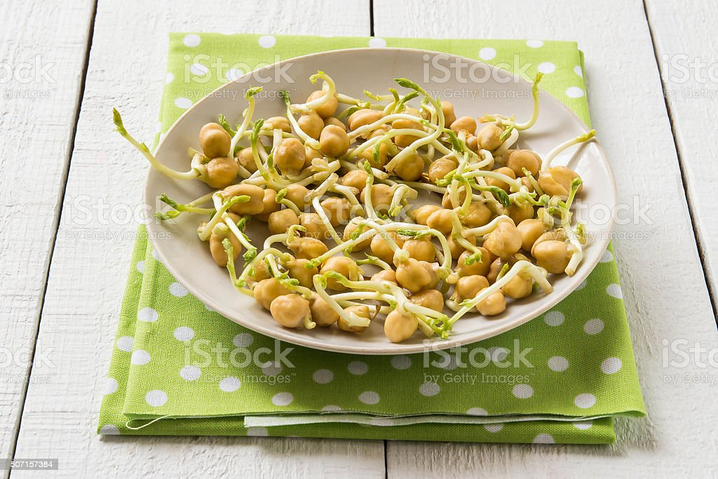 Sprouted chickpeas for cooking healthy food stock photo