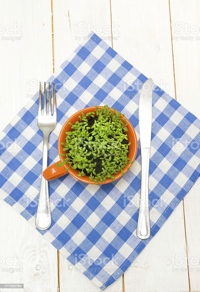 Sprouts of cress in cup, fork and knife on napkin stock photo