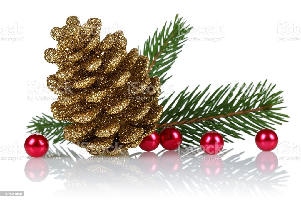 Spruce Bough and Cone stock photo