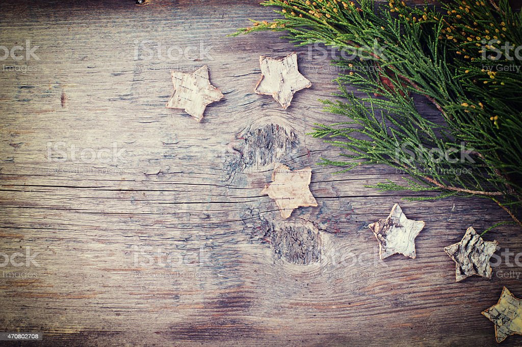 Spruce branches stock photo