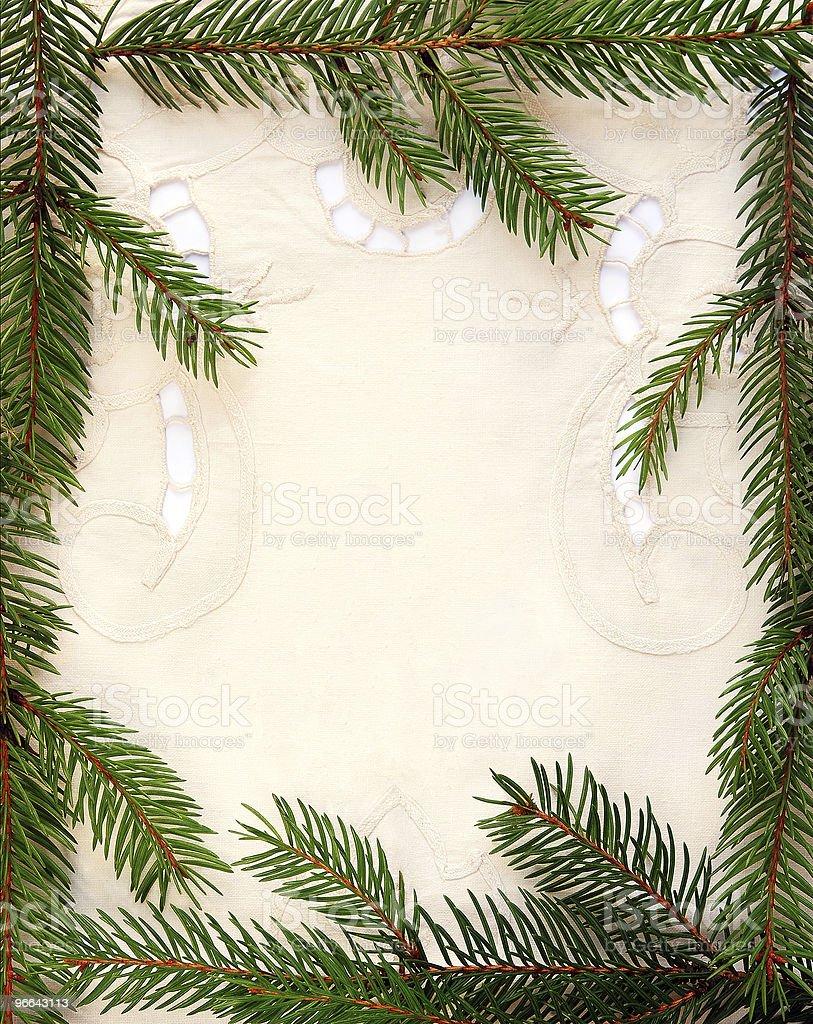 Spruce frame royalty-free stock photo