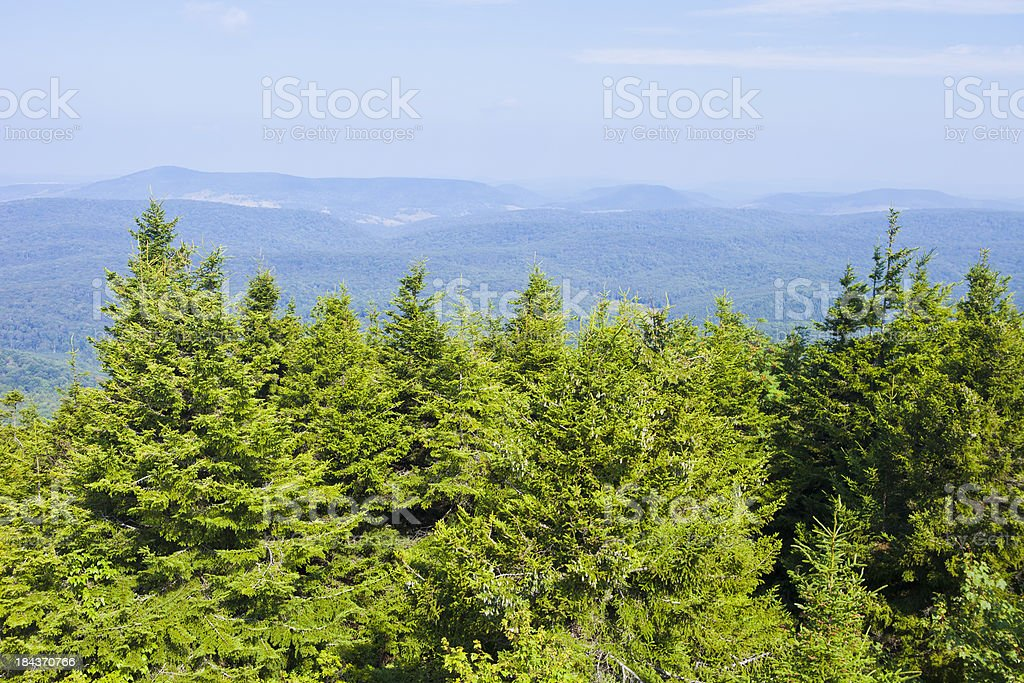 Spruce Knob In West Virginia, USA stock photo