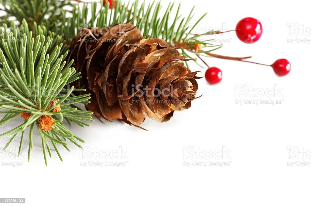 Spruce twig decoration royalty-free stock photo