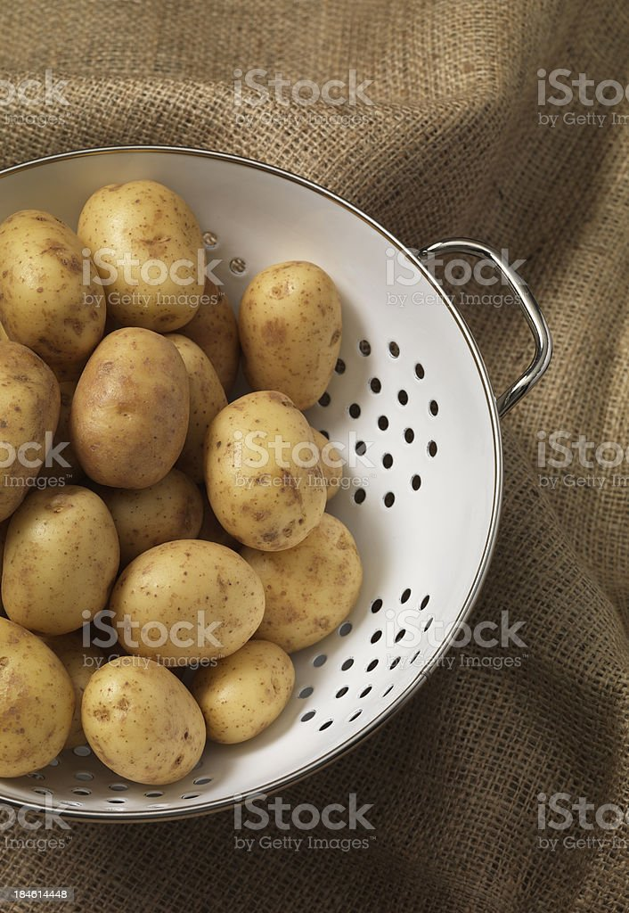 spuds ready to go stock photo