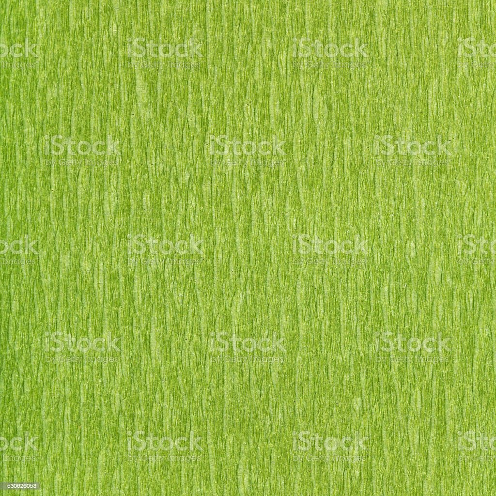 square background of fibrous structure green paper stock photo