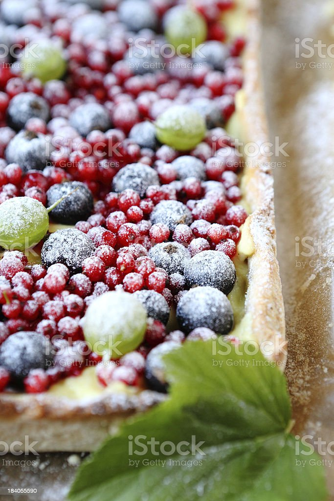 square cake with berries in powdered sugar, tart stock photo