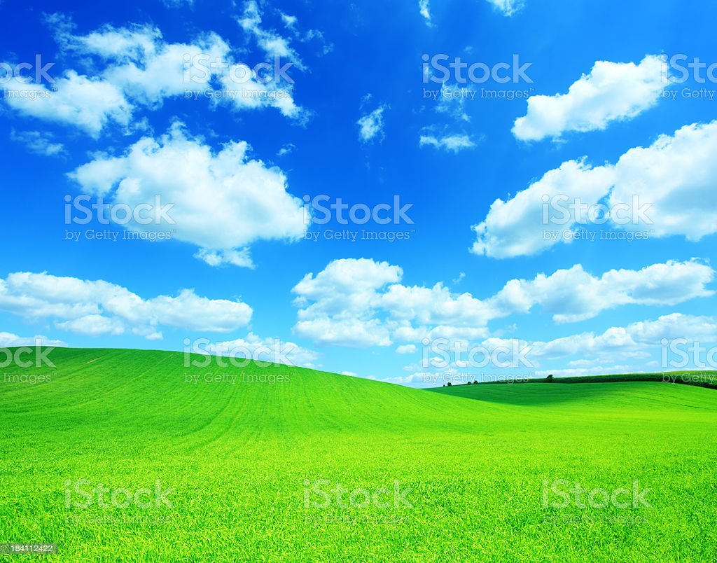 Square composition - Green field landscape royalty-free stock photo