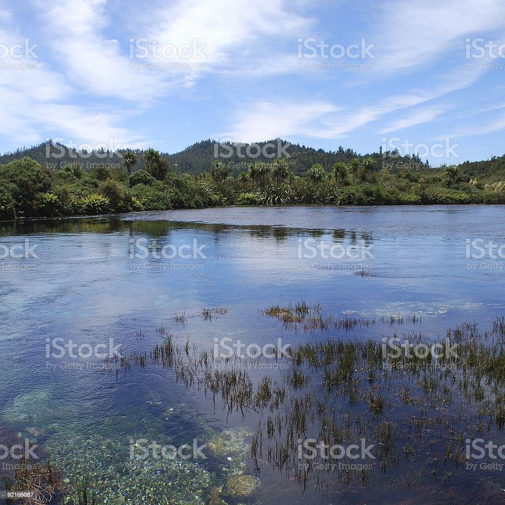 Square composition of Pupu Springs, Golden Bay stock photo