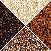 Square of yellow, red, black and mixed quinoa seeds