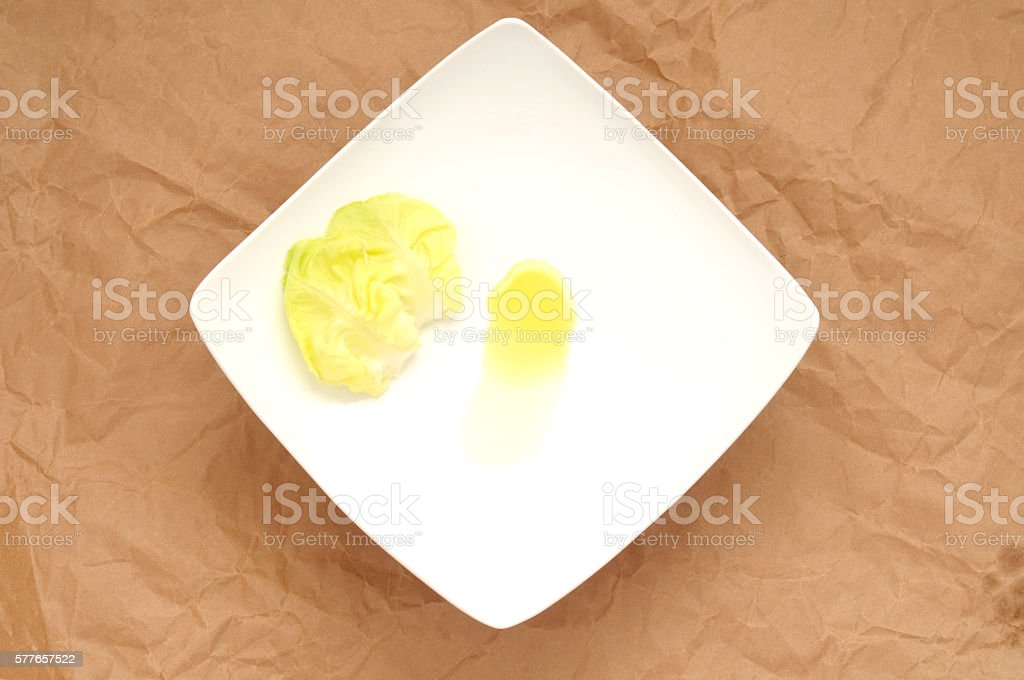 square plate with two leaves of lettuce stock photo