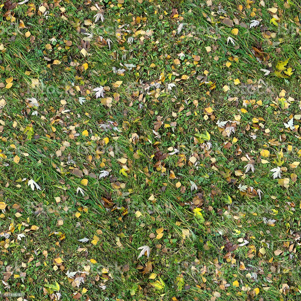 Square seamless texture of the grass with fall leaves. stock photo