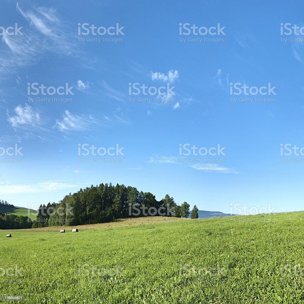 Square spring landscape 41MPix XXXXL - meadow, blue sky royalty-free stock photo