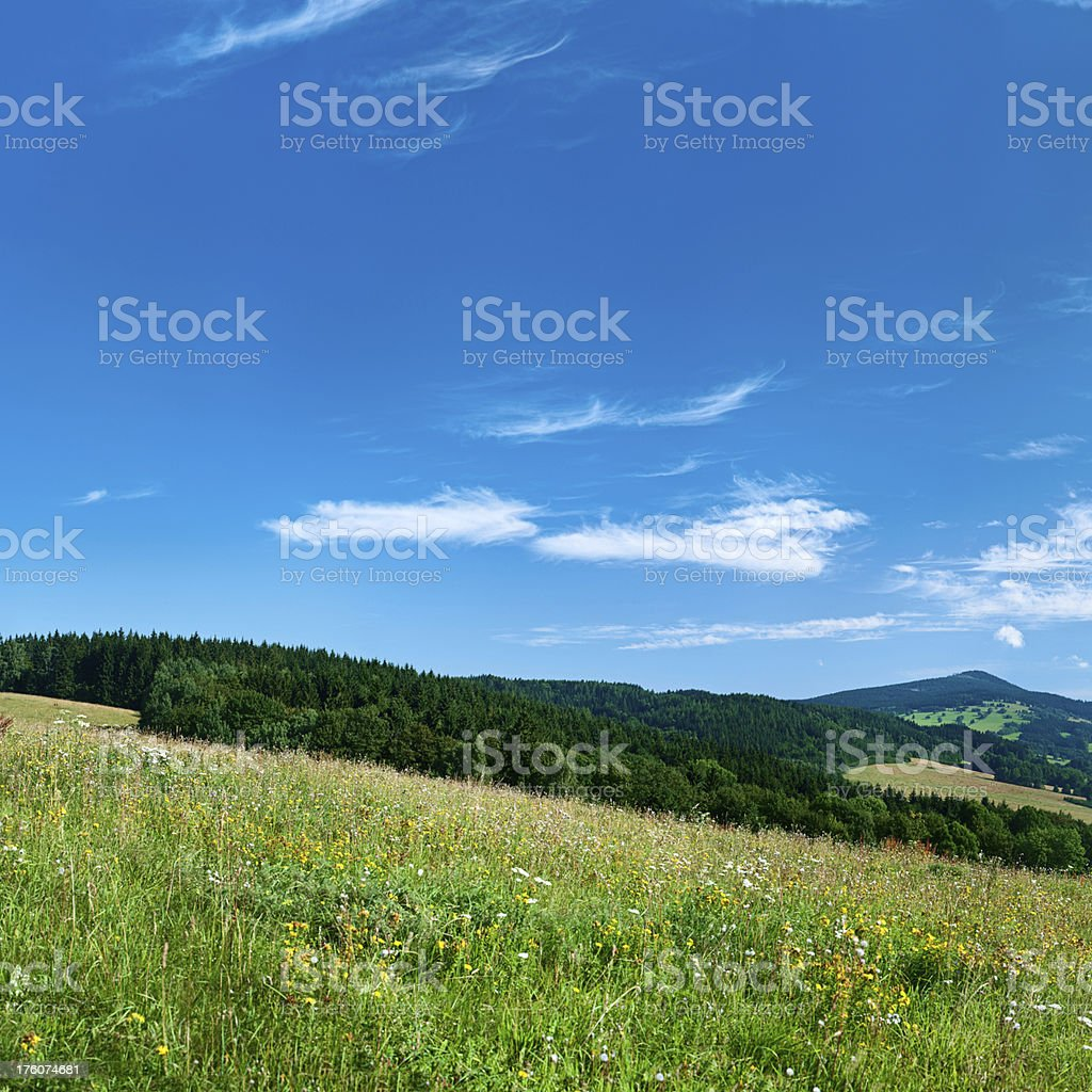 Square spring landscape 87MPix XXXXL - meadow, blue sky royalty-free stock photo