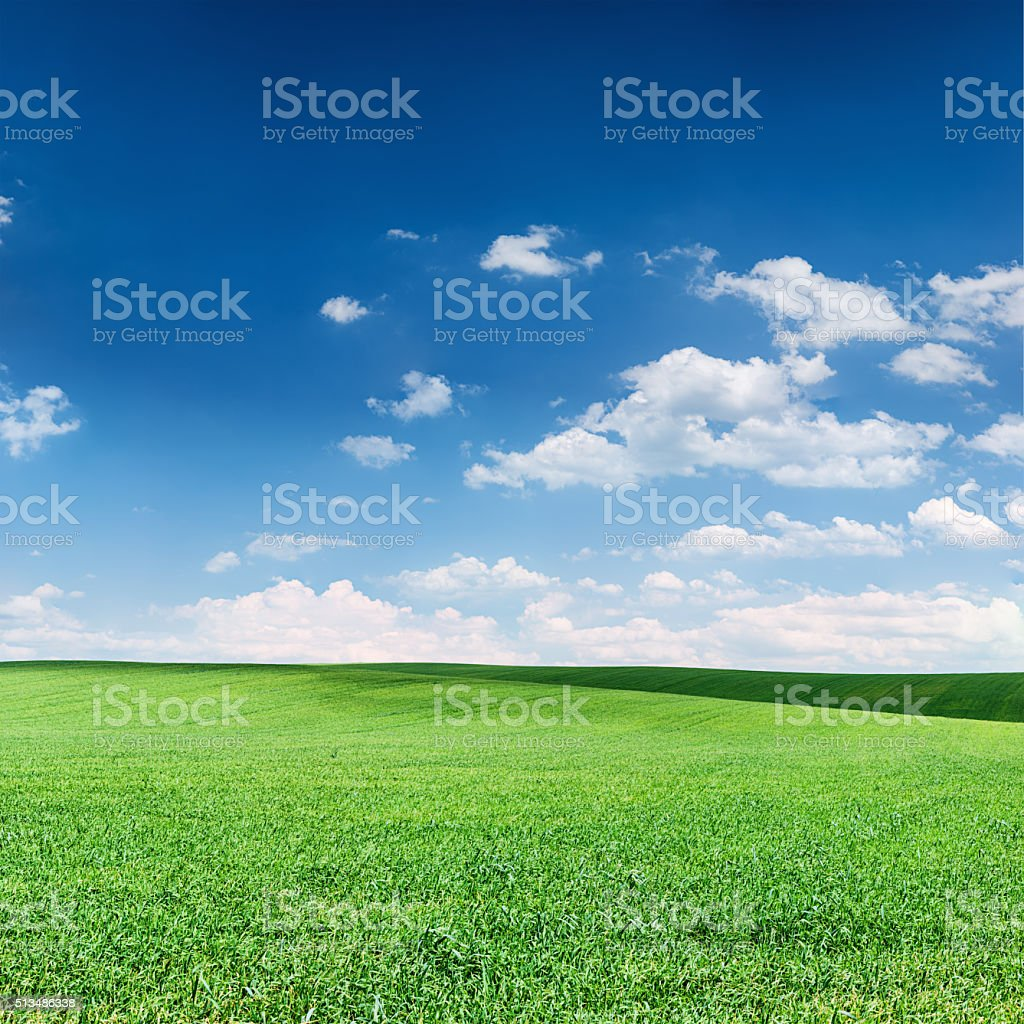 Square spring landscape - green fields, sky with clouds stock photo