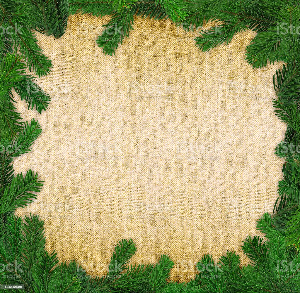 square spruce twig frame royalty-free stock photo