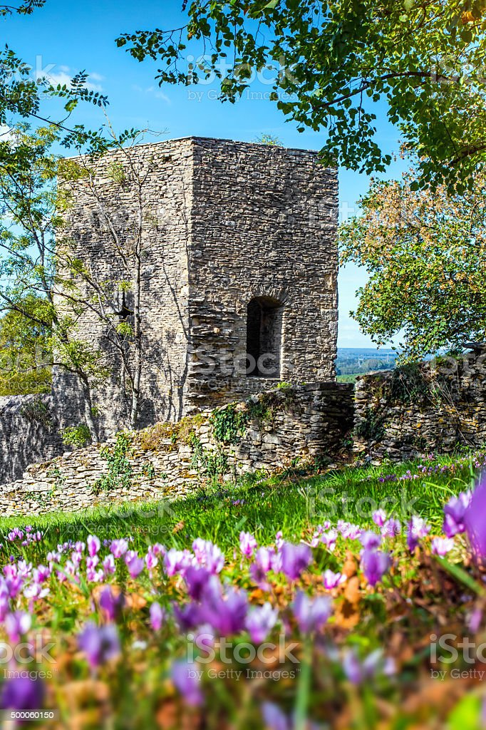 Square stone tower along medieval rampart in flowered meadow stock photo