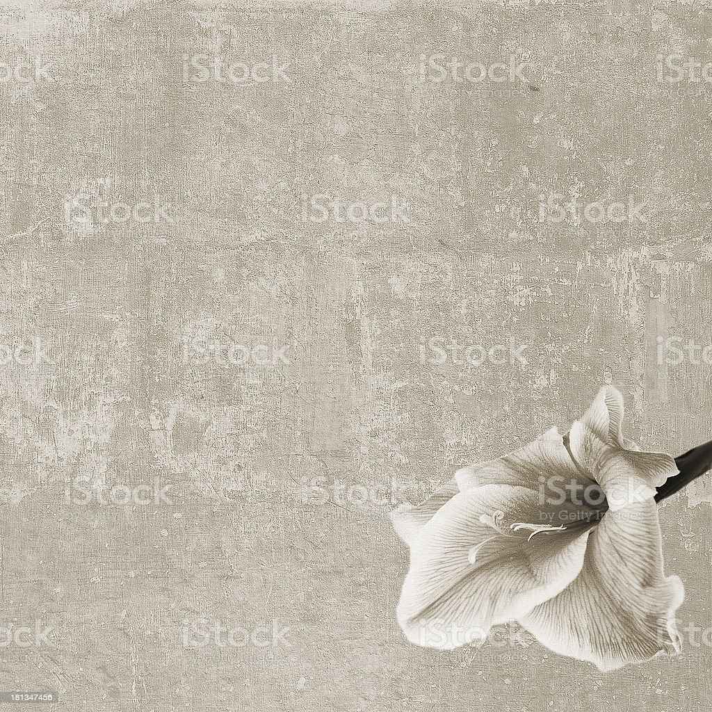 Square vintage texture with lily flower royalty-free stock photo