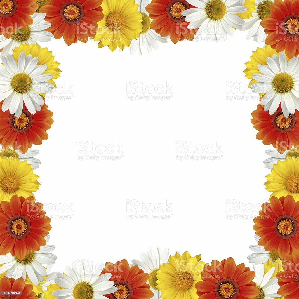 Squared flower frame XXL royalty-free stock photo