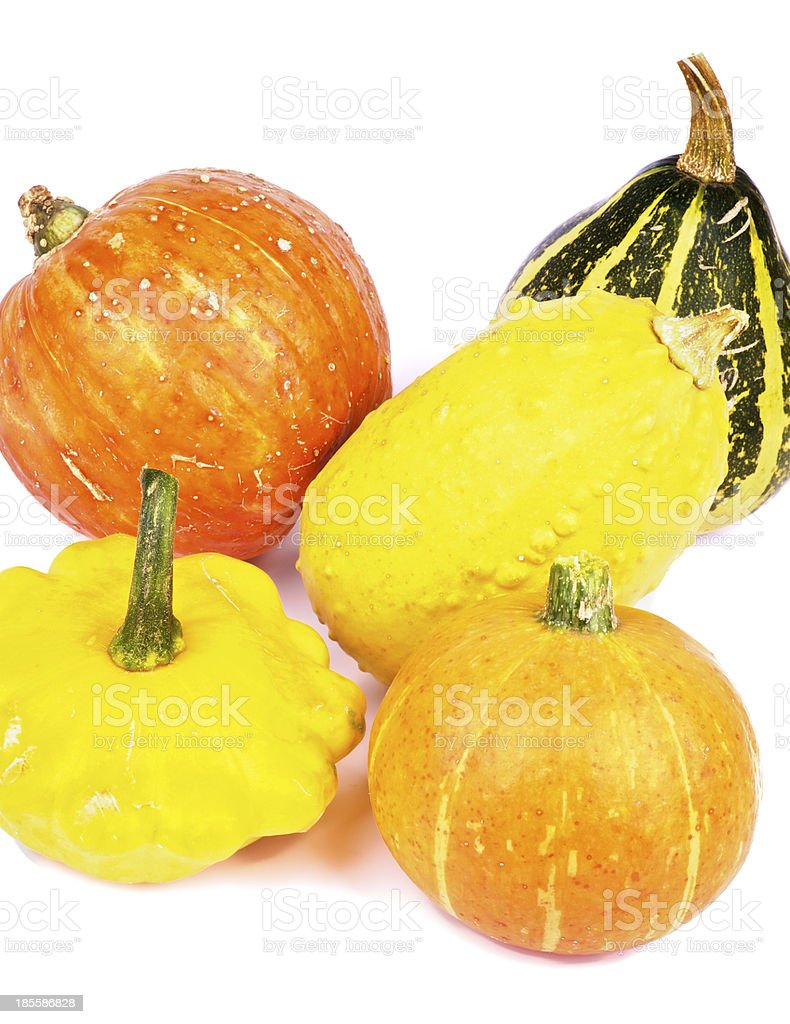 Squash and Pumpkins stock photo