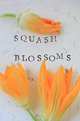 Squash blossoms and words