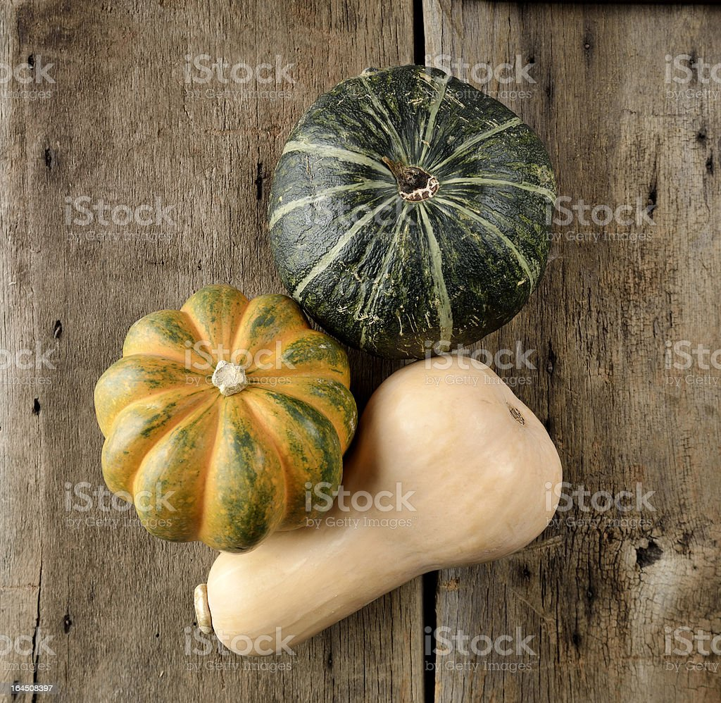 Squash Collection royalty-free stock photo