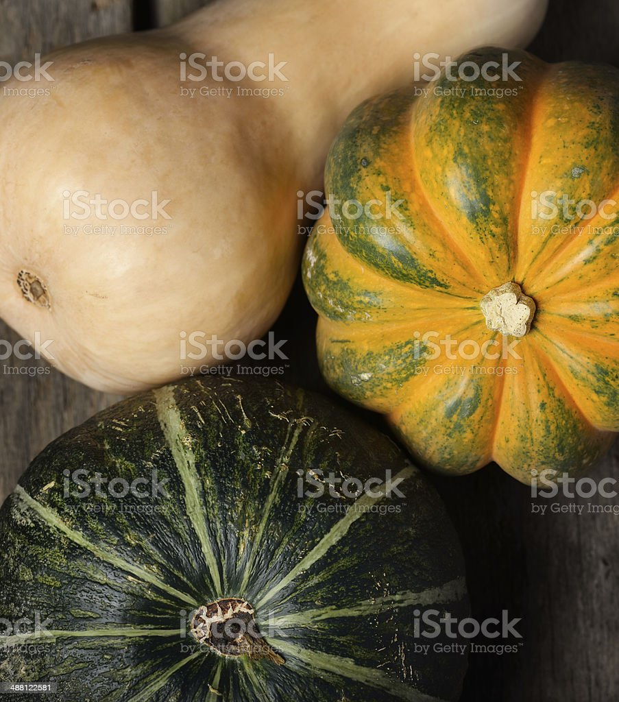 Squash Collection stock photo