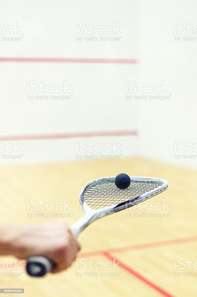 squash racket and ball in hand stock photo