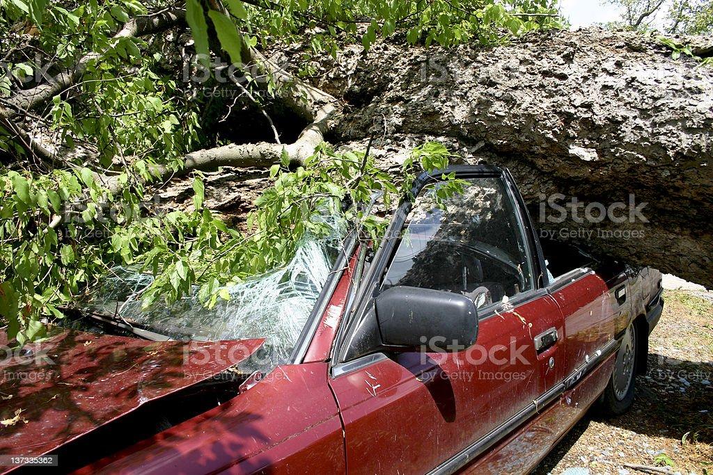 Squashed Vehicle royalty-free stock photo