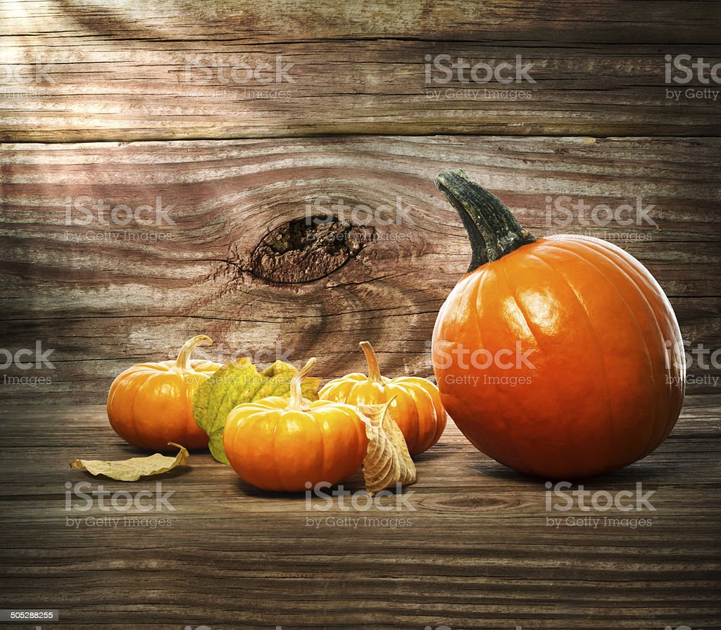 Squashes and pumpkins on wooden table background royalty-free stock photo